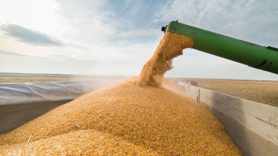 Agricultura lanzó un monitor de seguimiento de la comercialización de granos