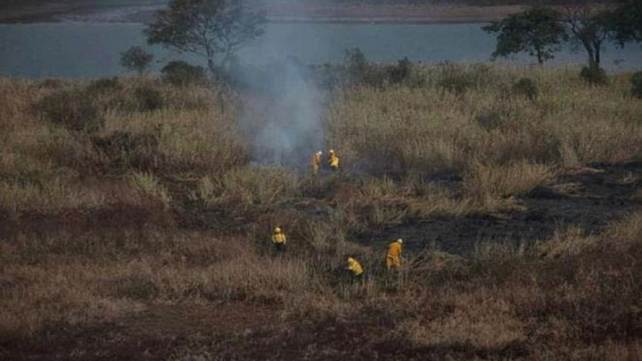 Procesan a siete personas por realizar quemas en las islas del Delta del Paraná