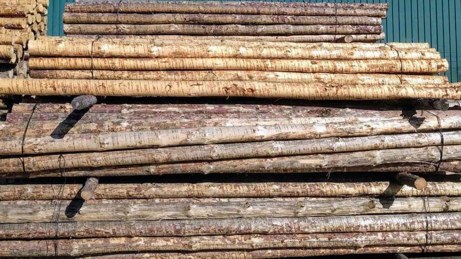 Cargan 33.000 toneladas de madera de pino en Entre Ríos con destino a China