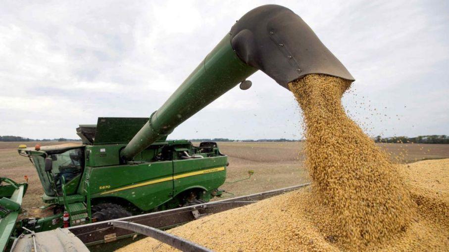 El valor de la cosecha 2020/2021 de soja y maíz podría alcanzar récord de 24.326 millones de dólares