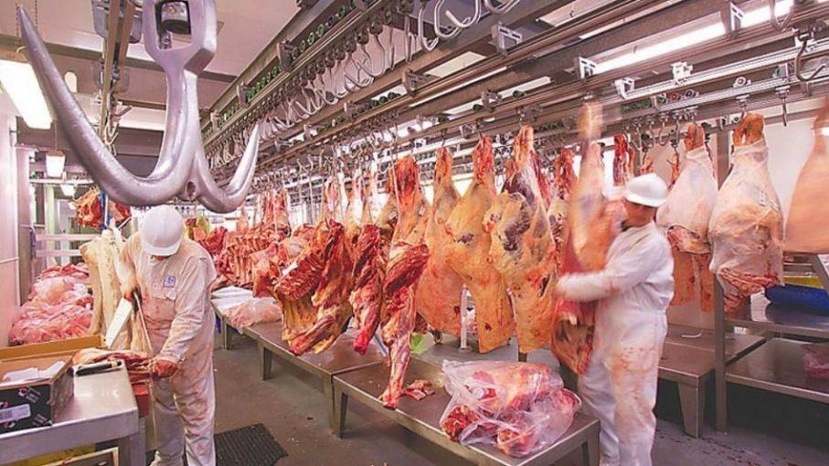 Agricultura distribuye cupo para exportar carne a Colombia entre seis frigoríficos