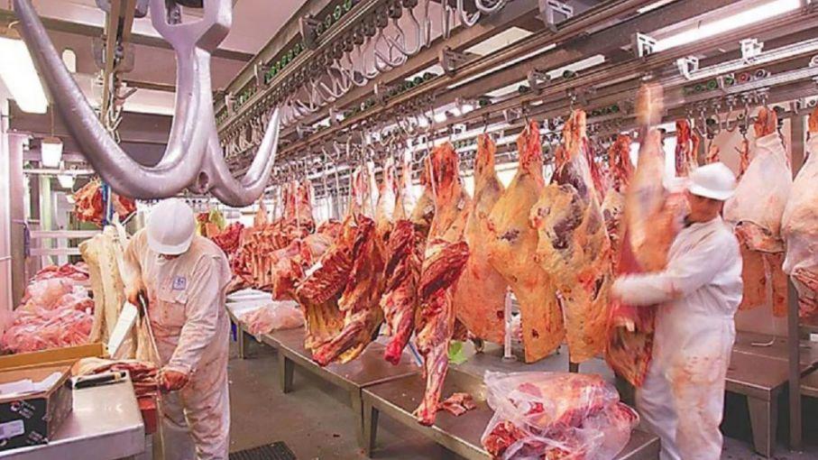 Vuelven a crecer las exportaciones de carne en octubre, con un alza de la demanda china