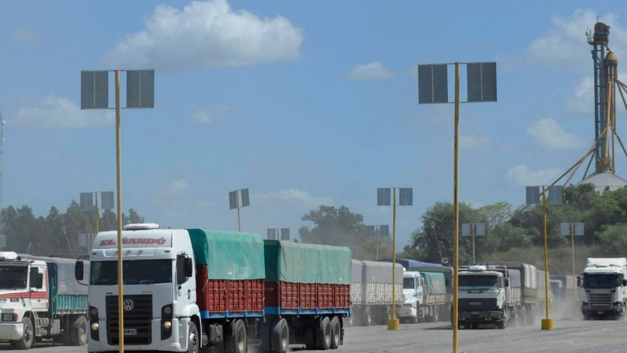 Transportistas de granos aseguran que el cese no se siente y se trabaja con total normalidad