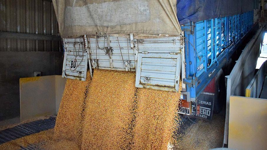 Reglamentan el aumento de 22,5% para el transporte de cargas de cereales y oleaginosas