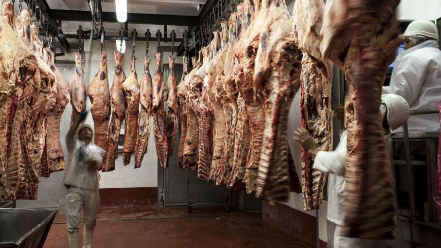 Leve caída de las exportaciones de carne en enero, con precios en fuerte baja