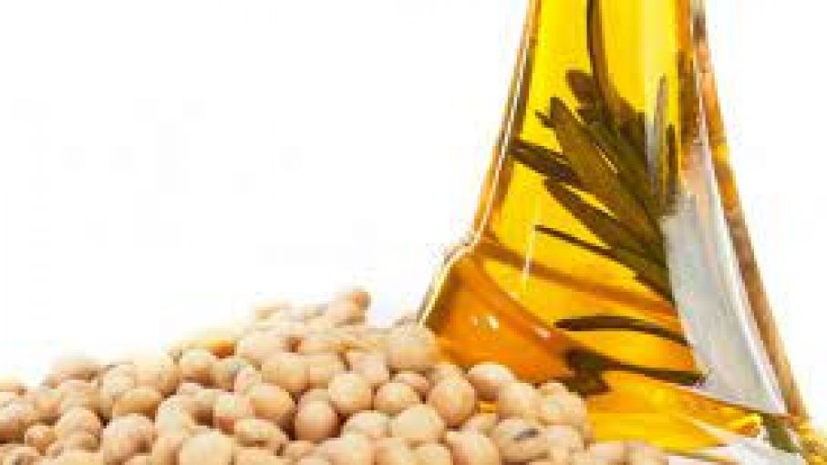 Récord en liquidación de divisas en envíos de aceite y granos