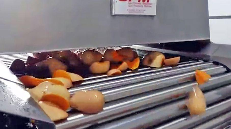 Elaboran pulpa de zapallo para gastronomía y exportación