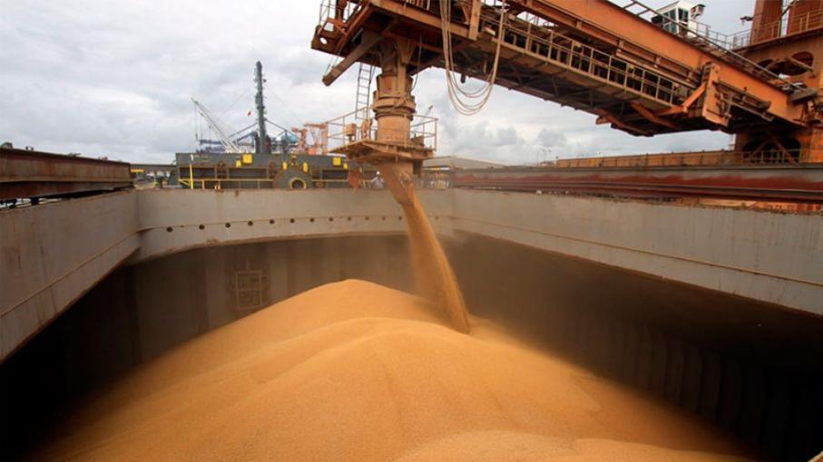 Caen los embarques de maíz y derivados de soja durante junio