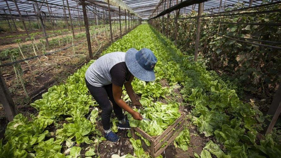 Abogan por un trabajo conjunto de los sectores público y privado para un desarrollo sostenible