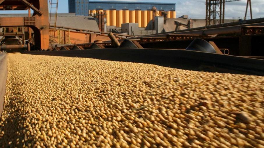 Los granos recuperaron la tendencia alcista en el Mercado de Chicago
